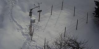 Campo neve Curon Belpiano