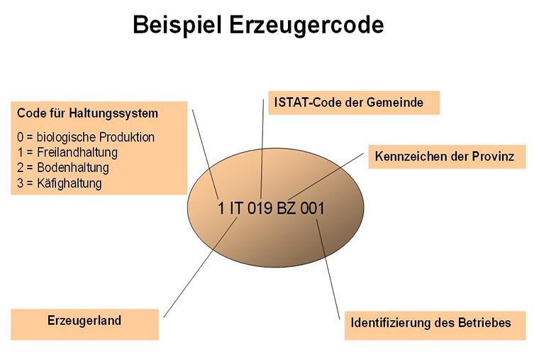 code für eier